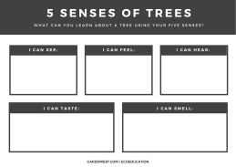 April 8 - SPROUTS - 5 Senses of Trees Handout Front - Garddwest EcoEducation